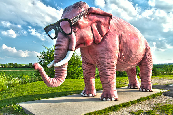 Pink Elephant near Deforest, Wisconsin